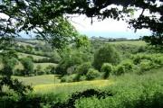 Fields and scrub, Woodlands Farm