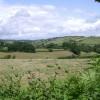 A fallow field beside Holcombe Down Road (2)