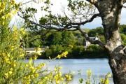 River Awe, Loch Etive