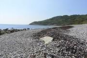 Beach at Charton Bay