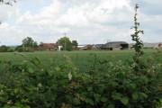 View across field to Havenhurst Farm