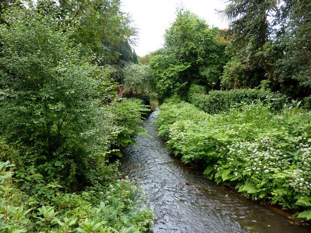Mill Brook, Chobham