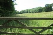 Southwick Estate towards Stroud Coppice