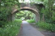 Bridge over the Tarka Trail