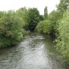 River Lugg At Bodenham