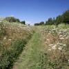 Line walk, Little Whelnetham