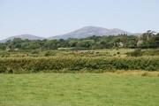 Tir amaethyddol Eifionydd - Eifionydd farmland