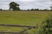 Field near Seaton Ross
