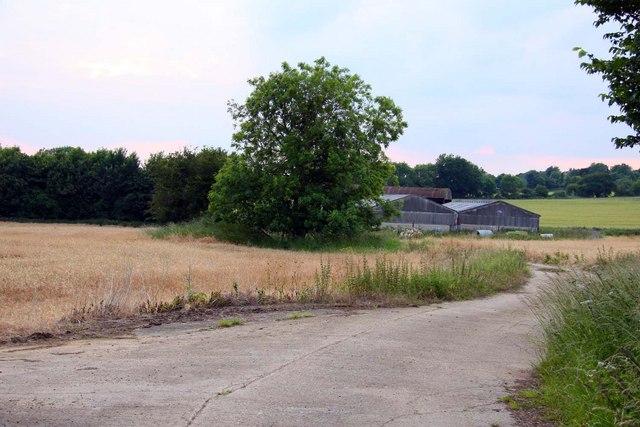 Farm on Fox Lane
