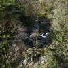 Afon Conwy
