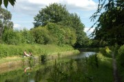 Tame Valley Canal near Newton