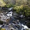 Afon Conwy below the Fairy Glen