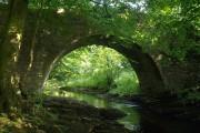 Horsebrook Bridge