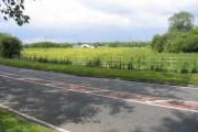 Mersey Valley Farmland