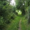 Footpath nearing Oxford Road