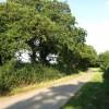 Tye Hill Road