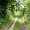 Footpath in Shabden Valley