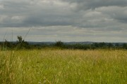 View from Akeley