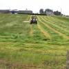 Mowing grass, Binnafreghan