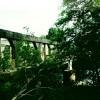 Advie Bridge through trees