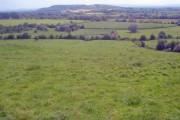 Hillside meadow at Longridge