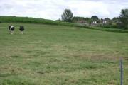 A little irrigation near Church Farm