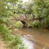 Eashing: the River Wey emerges from Eashing Bridge