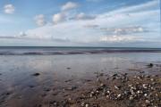 Traeth gyda'r llanw ar drai / A beach at low tide