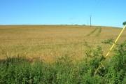 Farmland South of North Dalton