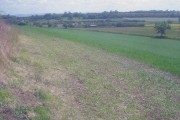 Overlooking Rectory Farm