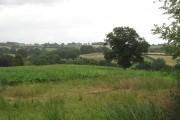 Root crop, Kimbolton
