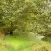 Small pond near Dalton Lees