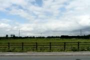 Willow Bank Farm