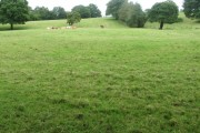 Near Folds Lane Farm