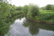 The River Rother
