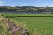 Grassland Near Longhaugh Point