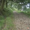Byway in woodland near Caerau