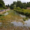 The River Colne in Bibury