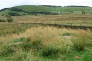 Towards Whitelee and Gautries Hill