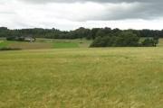 Barley, Nether Johnstone