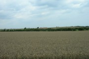 Farmland East of Aldbrough