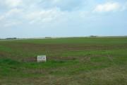 Farmland near Aldbrough
