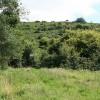 Moretonhampstead: towards Hingston Down