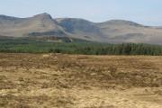 Moorland, Upper Tote