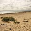 Beach below Car Park, Hengistbury Head