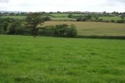 Fields near Castle Lane