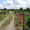 Golf Lane allotments, Whitnash