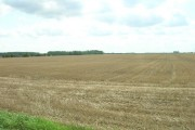 Farmland South of Scurf Dike