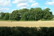 Farmland near Watton