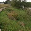 Revetment on the River Wye near Hampton Bishop